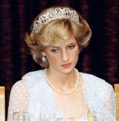 45-Lady Diana 4