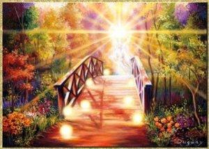 11-Puente hacia la Luz